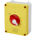 Enclosed Isolator 63A 4P IP65